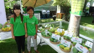 Mango Festival greeters