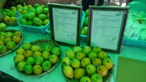 Mangos organic